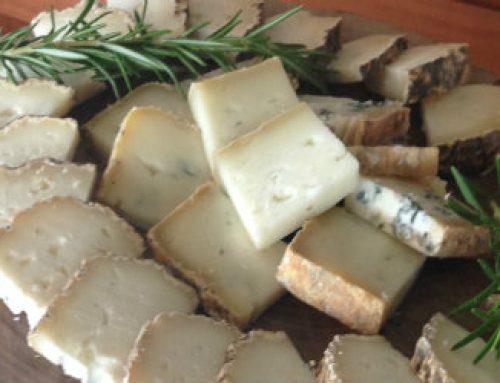 מחלבת אלטו – גבינות עזים מהגליל – בית קפה חנות ומחלבה