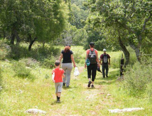 טיול בשמורת אלוני אבא ובית לחם הגלילית
